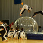 Gym for Life, Cape Town/RSA 2013: SFG Mendriso/SUI