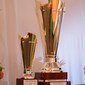 Gym for Life, Cape Town/RSA 2013: trophy