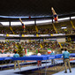 World Games Cali/COL 2013: overview