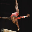 ART WCh Glasgow/GBR 2015: WILLIAMS Thema/TTO