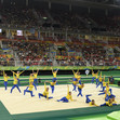 Olympic Games Rio 2016: FIG-Gala, overview