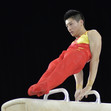 ART WCh Montreal/CAN: WENG Hao CHN