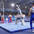 Youth Olympic Games Buenos Aires/ARG 2018: warmup pommel horse