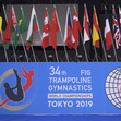 TRA WCh Tokyo/JPN 2019: logos and flags