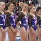 Artistic WCh Rotterdam/NED 2010: team SUI