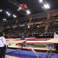 Trampoline WCh Metz/FRA 2010: overview with LENDERS/NED