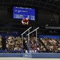 Artistic WCh Tokyo/JPN 2011: overview parallel bars