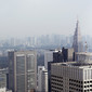Artistic WCh Tokyo/JPN 2011: city from METROPOLITAN government building