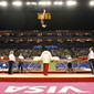 Visa International Gymnastics 2012: overview